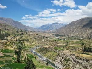 Pérou : le Cañon del Colca