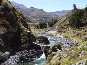 Pérou : paysage du Cañon del Colca