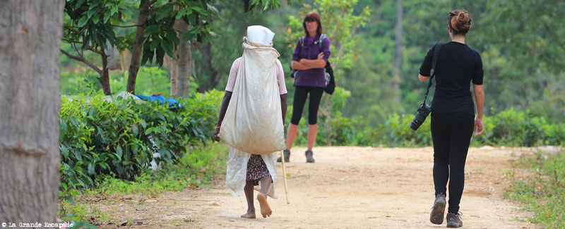 Justine et Barbara dans les montagnes du centre du Sri Lanka