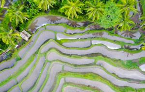 L'Asie en été : où aller pour éviter la mousson ?