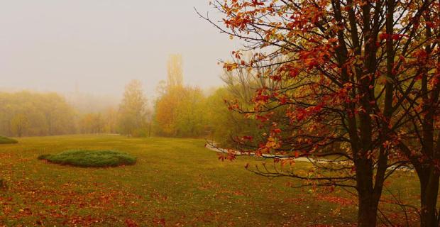 Partir en automne : avantages et top destinations