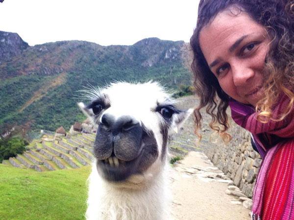 Selfie de Virginie & un lama au Machu Picchu (Pérou)