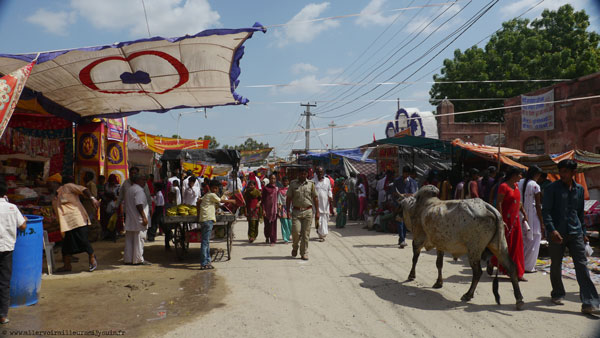 Le marché de Deshnoke (Inde)