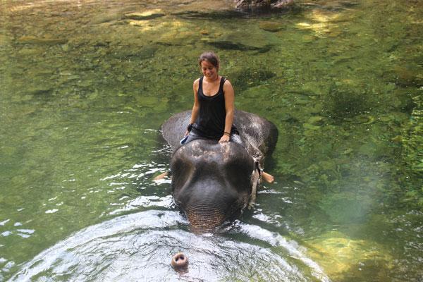 Margaux sur un éléphant à Koh Chang (Thaïlande)