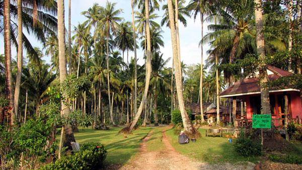 Quelle île choisir en Thaïlande : balade sur Koh Kood