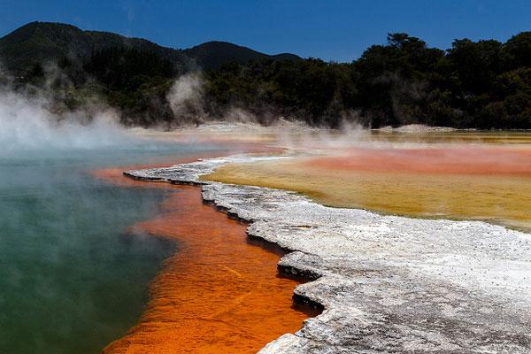 Parc Wai-O-Tapu dans la région de Rotorua (Nouvelle-Zélande)
