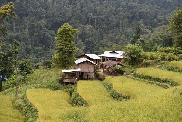 Maisons traditionnelles lepcha, à Duka, en Inde