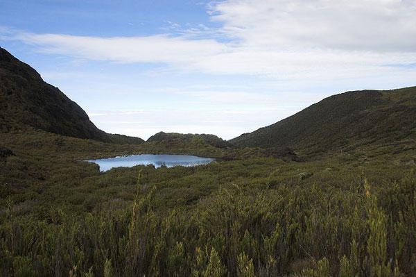 Trek du Cerro Chirripó, Costa Rica