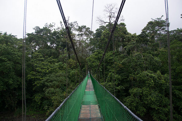 Pont suspendu dans la jungle de Sarapiquí, Costa Rica