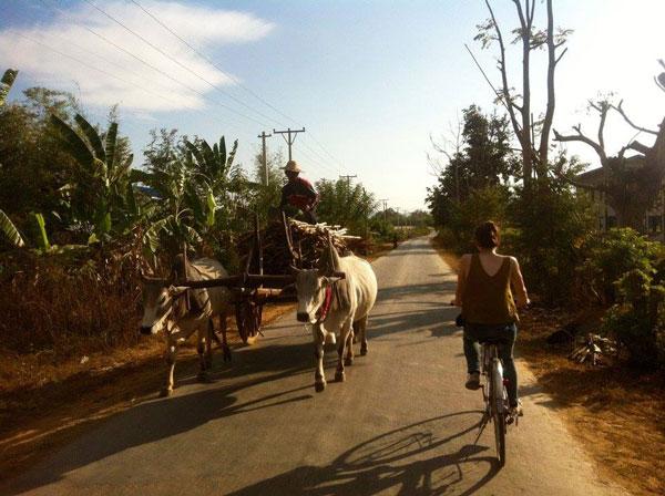 Alice à vélo au Myanmar
