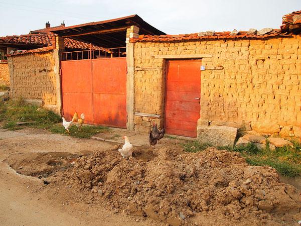 Volontariat dans une ferme en Bulgarie