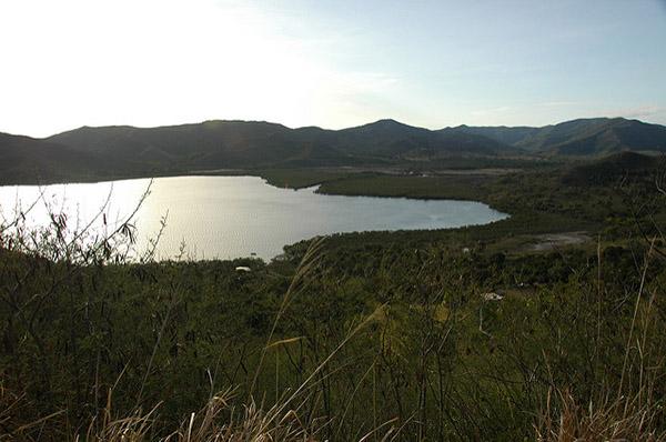 Vue de la mangrove, Grande Terre