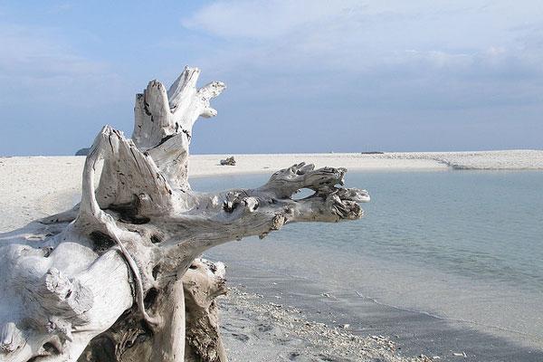 L'île de Koh Adang