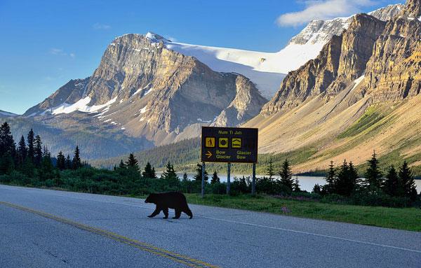 Partir loin des foules en été : Le Canada