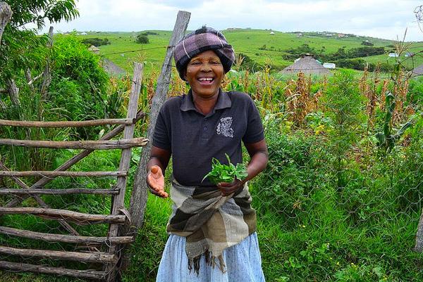 Mama Mamrhasi (tribu Xhosa) du village d'Hobeni