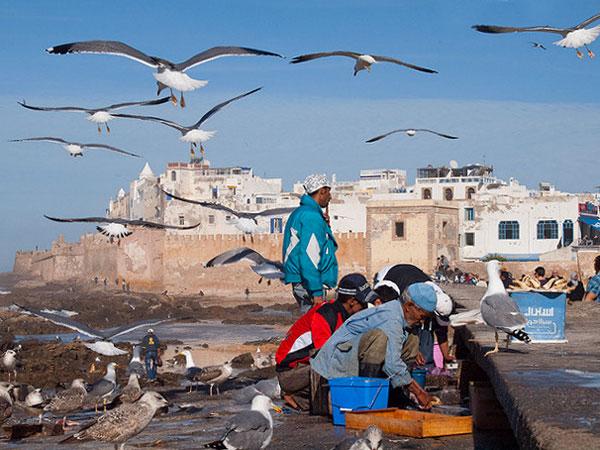 Destinations pour fuir l'hiver : Le Maroc