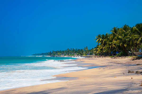 Destinations pour fuir l'hiver : Le Sri Lanka