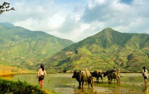 3 idées d'itinéraires au Vietnam