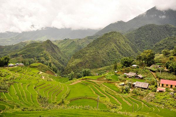 La région de Sa Pa, Vietnam