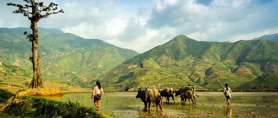 3 idées d'itinéraires pour visiter le Vietnam