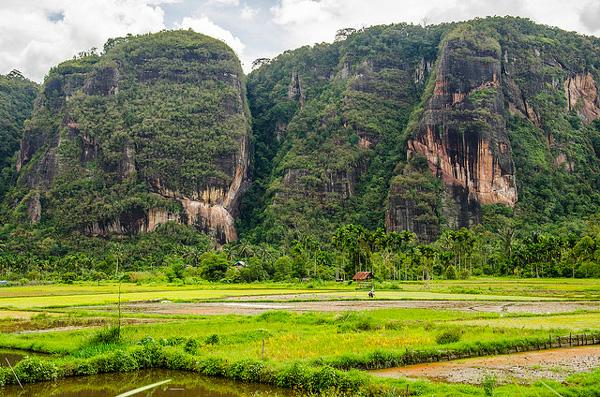 La Vallée d'Harau (Sumatra)
