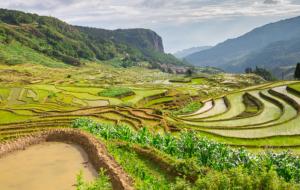 7 excellentes raisons de visiter le Yunnan, en Chine