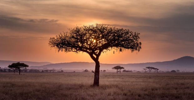 Comment intégrer l'Afrique à son itinéraire de tour du monde ?